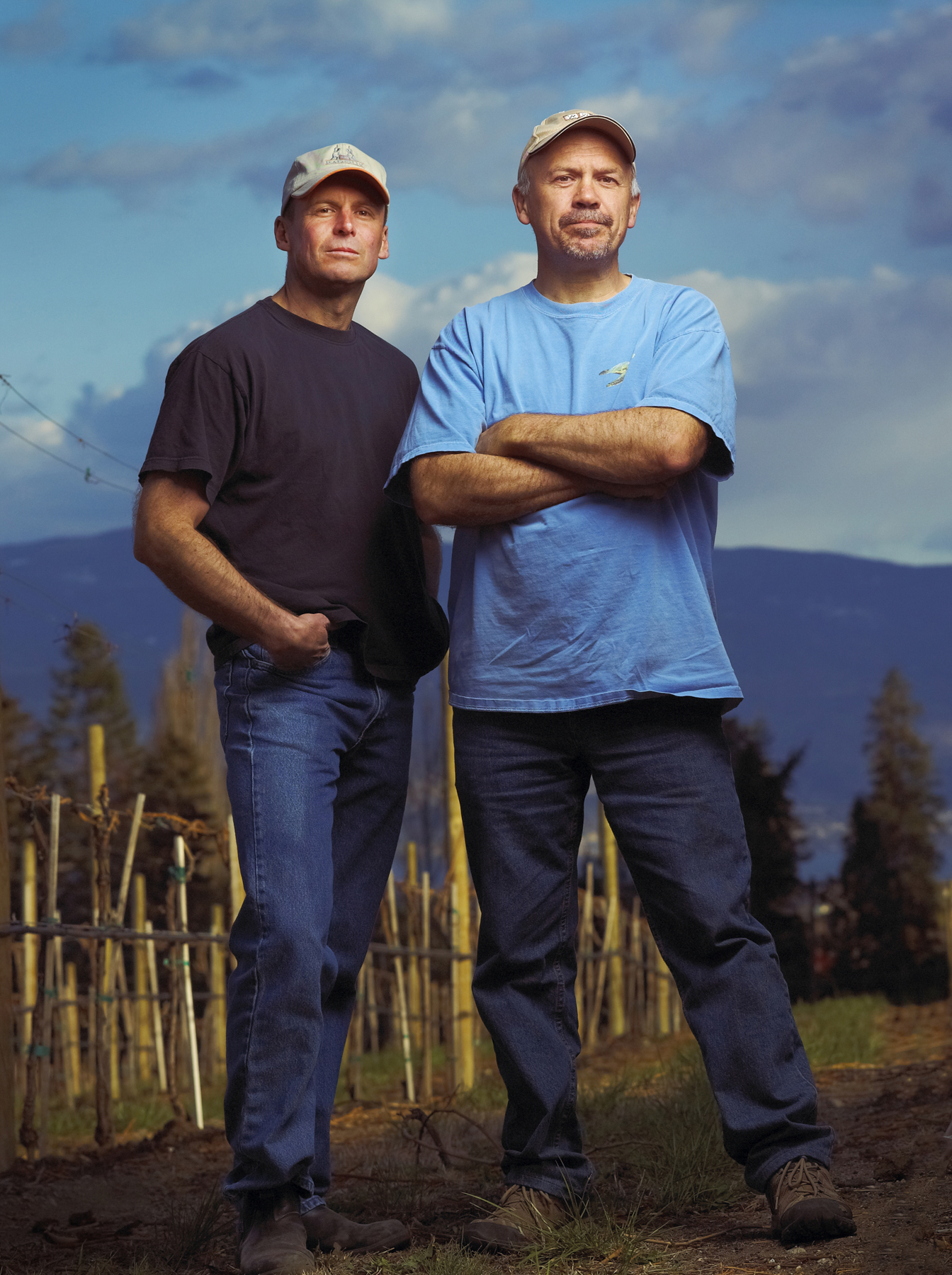 Bartier Brothers Vineyard